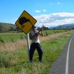 Manu Da Banda - Kiwi road- NZ